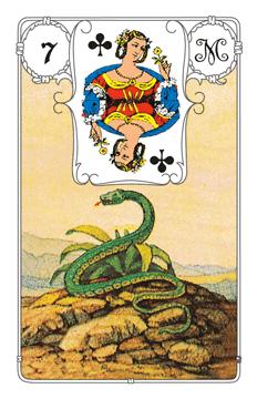 Lenormandkarte Die Schlange